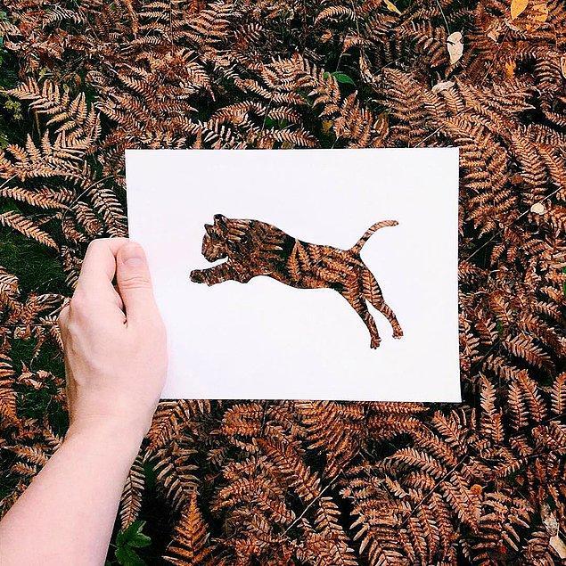 Бумажные силуэты животных на фоне природы