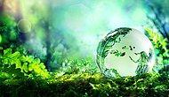 Çim ile İlgili Bilmeniz Gerekenler 25 Altın Bilgi