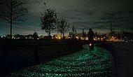 Van Gogh'dan Esinlenilerek Dizayn Edilen Bu Bisiklet Yolu Geceleri Işık Saçıyor!