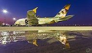 En İyi First Class ve Yılın Havayolu Ödüllerini Kazanan Etihad Airways İle Lüks Seyahat Nasıl Olur?