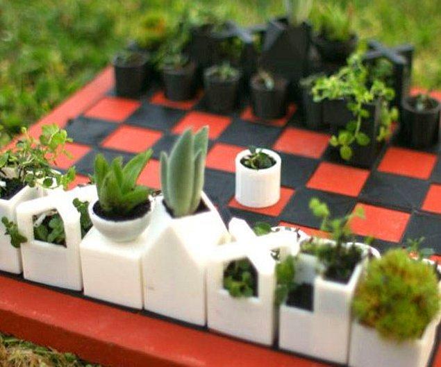Горшочки для цветов и, по совместительству, шахматная доска.