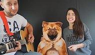 Çünkü Ben Bir Köpeğim   Akustik