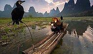 National Geographic'in En Çok Beğeni Alan Fotoğraflardan Seçtiği 2015'in 20 Favori Karesi