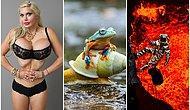 2015'in Yılında Objektiflere Takılmış Dünyanın Dört Bir Yanından 31 İlginç Fotoğraf