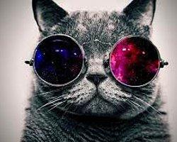 Uzmanlar, süs için değil sağlık için güneş gözlüğün kullanılması gerektiğini belirtiyor