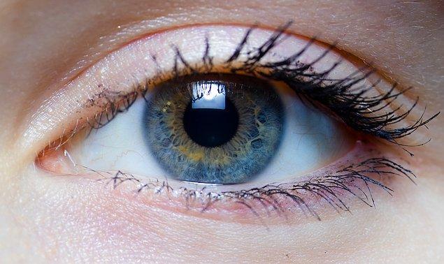 11. Kuzey İngiltere'de yaşayan bir kadının gözlerinde dört farklı koni hücresi olduğu saptanmıştır.