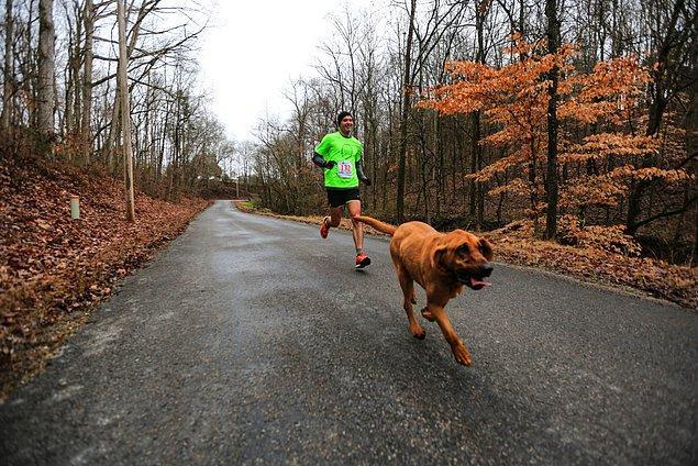 7. olduğu yarış ise bir yarı maraton kısaca 21,1 km!