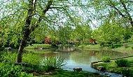 En güzel 8 doğa manzarası