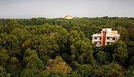 16 Fotoğrafla Dinden ve Politikadan Uzak Olan Olağanüstü Şehir: Auroville
