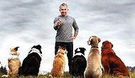 Köpeklere Fısıldayan Adam Cesar Millan'dan Altın Değerinde 12 Tavsiye