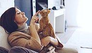 Evcil Hayvanlarla İlişkiniz Karakterinizi Belirliyor
