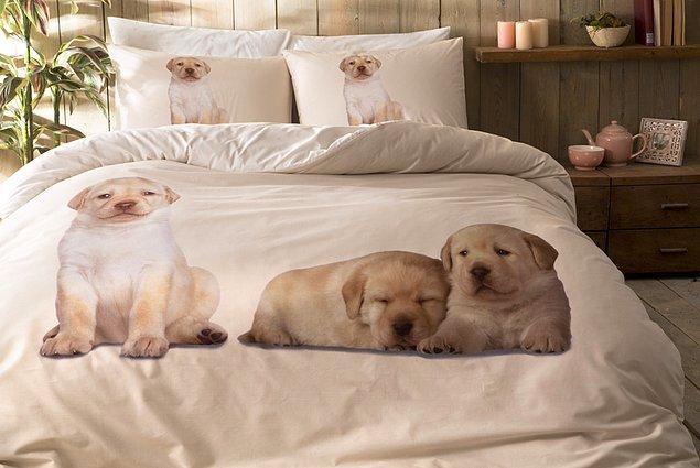 4. Nevresimleri de aşırı minnoştur. Bir sürü hayvan figürünün içinde yatmaktan mutluluk duyarlar.