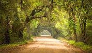 Amerika'da Gezilecek 11 Doğa Harikası Yer