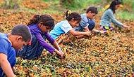 Bugün 23 Nisan: 8 Başlık ile Türkiye'nin Çocuk Hakları Karnesi