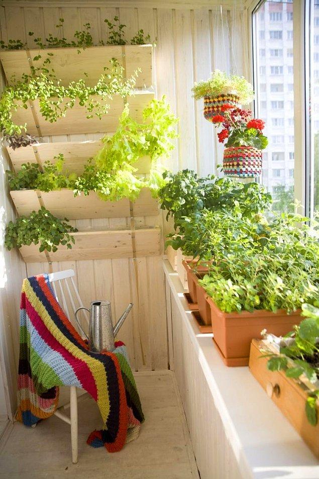 9. Balkon mutfağa yakın olursa tazecik otların tam zamanı!