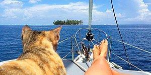 İşinden İstifa Edip Kedisiyle Dünya Turuna Çıkan Kadının Macera Dolu Hayatından 19 Kare