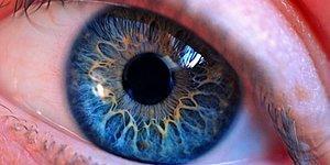 Gözlerle Alakalı Her Kitapta Rastlayamayacağınız Türden 25 İlginç Bilgi
