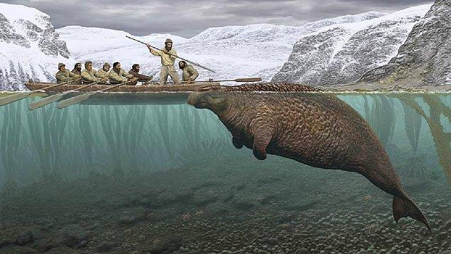 6. Son 500 yılda insanlar yüzünden 322 hayvan türünün soyu tükendi.