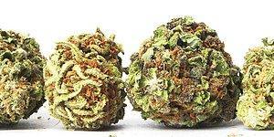 7 Farklı Uyuşturucu Maddenin Beynimizde Yarattığı Kimyasal Değişimler
