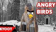 En Az Oyunu Kadar Eğlenceli Gerçek Hayatın Sinirli Kuşları
