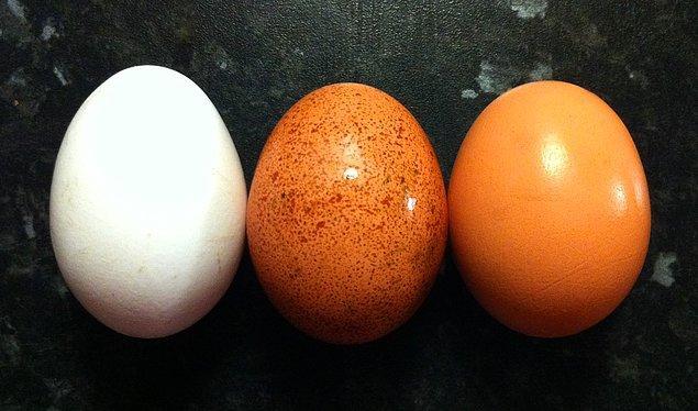13. Elinde 2 adet yumurta var ve 100 katlı bir binaya gireceksin.
