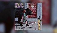 Red Hot Chili Peppers - We Turn Red Şarkısını Yayınladı