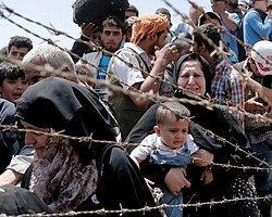 Hepimiz Mülteci Olabiliriz! | Senar Ataman | P24