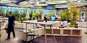 Aklınızı Başınızdan Alacak Güzellikte Yeni Nesil Ofis Alanı Yaklaşımı: Biyofilik Tasarım