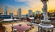Pamuk Elleri Cebe Rahatça Girenleri Üzmeyecek, Hayat Pahalılığı En Yüksek 19 Şehir