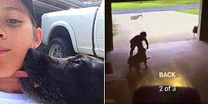 İç Burkan Hikayesiyle Komşusunun Köpeğini Gizli Gizli Seven Ufaklık