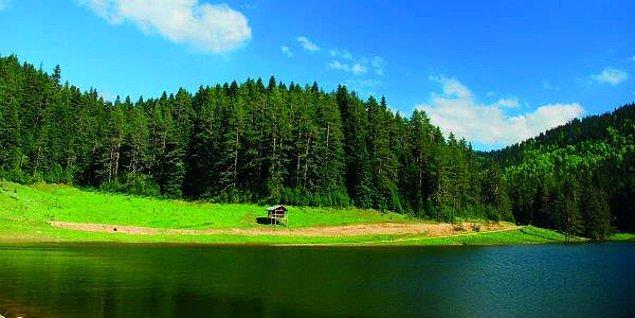 Kesinlikle görülmeye değer yerlerden olan Yenice Ormanları'nı gezi planınıza ekleyerek yeşillikler içinde keyifli zaman geçirebilirsiniz.