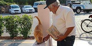 'İnsanlık Ölmedi' Dedirten Hikaye: Hurda Satarak Kedileri Besliyor