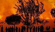 İzmir Buca'daki Yangın Kontrol Altında