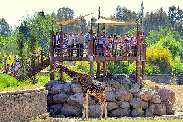 1. Doğal Yaşam Parkı'nı ziyaret edin