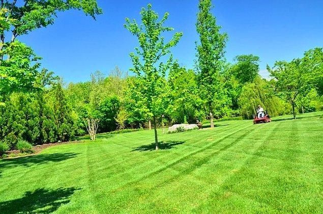 1. Hadi başlayalım: Yeni biçilmiş çim kokusu desek sana?