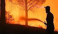 Kaz Dağları'ndaki Yangında Sabotaj Şüphesi