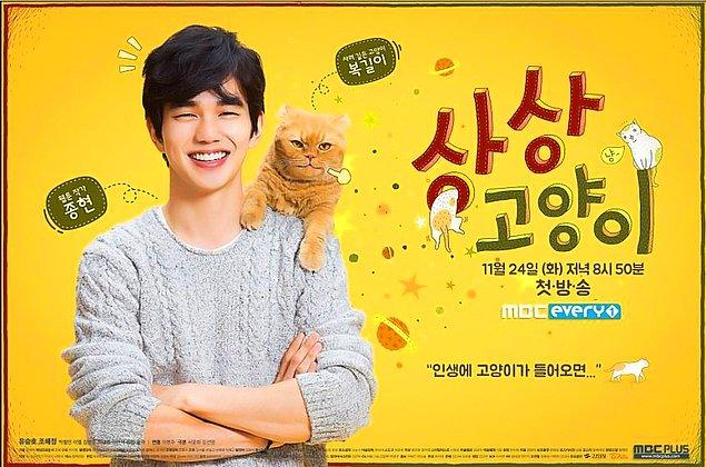 7. Imaginary Cat (2015-2016)