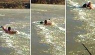 Mahsur Kalan Köpeği Kurtarmak İçin Elleriyle Donmuş Gölü Yaran Kahraman İnsan