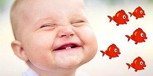 0-3 Yaş Arası Tayfanın Deli Olduğu Popüler Şarkı: Kırmızı Balık Kaç Kaç Kaç!
