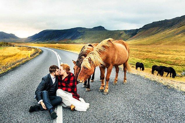 5. Batı İzlanda
