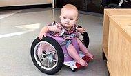 13 Aylık Bebeklerine Bir Tekerlekli Sandalye Bulamayınca Kendi İcadını Yapan Müthiş Aile