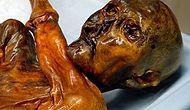 5300 Yıl Önce Yaşayan Ötzi'nin Mumyalaşmış Bedenini Bulan İnsanların Üzerine Lanet Yağdı!