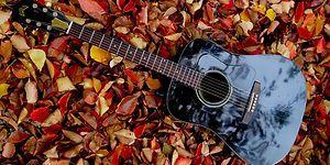 Sonbaharın Serinliğini İçinizde Hissettirecek Hüzün Kokan 23 Sakin Şarkı