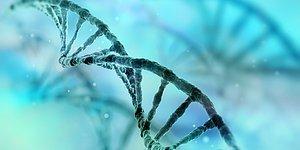 Bilim İnsanları Açıkladı: 6. His Aslında Mutasyonlu Bir Gen!