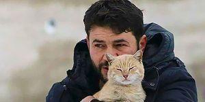 İnsanlar Bir Bir Kaçarken, Terk Edilmiş Kediler İçin Halep'te Kalan Koca Yürekli Adam