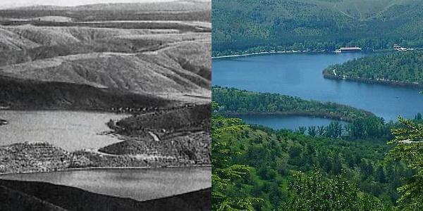 Bozkırı Yeşillendiren Umut: İnsan Elinin Mucizeler Yarattığını Gösteren ODTÜ Ormanı