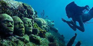Korkutuculuğu ve Güzelliğiyle Sevdiğimiz Uçsuz Bucaksız Okyanuslar Hakkında 28 Bilgi