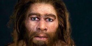 Bilim Açıklıyor: İnsanoğlunun Evrimi Hakkında Yakın Zamanda Elde Edilen Şaşırtıcı Bulgular