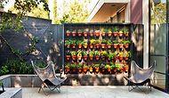 Bir Çerçevenin Yapabileceğinden Çok Daha Fazlasını Veren Doğal Akım: Dikey Bahçecilik