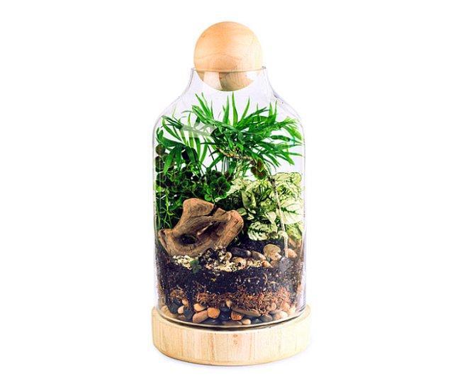 12. Kendi botanik bahçenizi bile oluşturabilirsiniz.